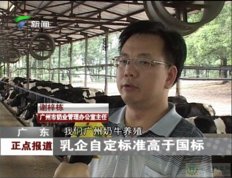 采访谢主任视频--广东乳企自定标准高于国标
