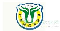 广东省奶业协会团体会员登记申请表