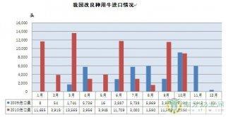 我国1-10月进口7.28万头奶牛 超去年进口3.22万头