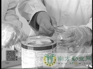 聚焦:察看中国境内奶粉市场现状