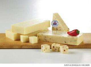 探索诱人美国奶酪(图)