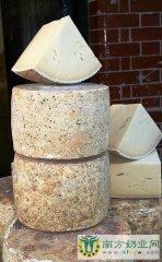 去欧洲追寻奶酪的历史